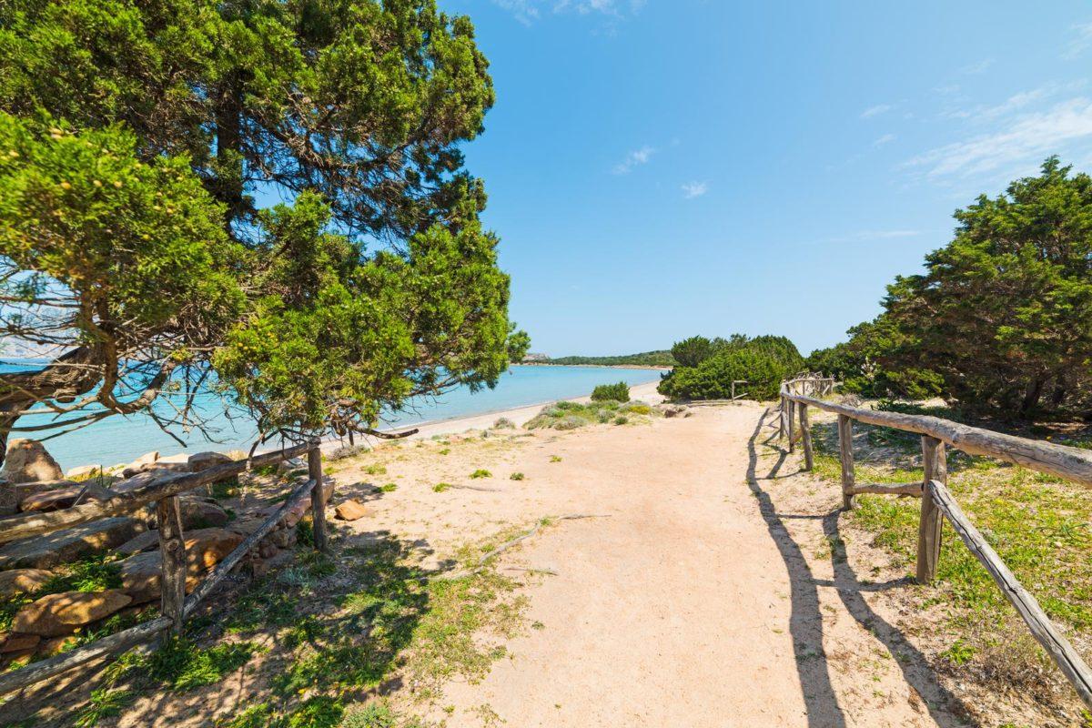 Spiaggia Capo Coda Cavallo